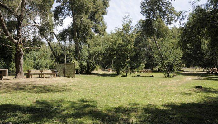 club_conce_21-zonas-de-picnic